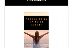 DropShipping : Comment se lancer ?