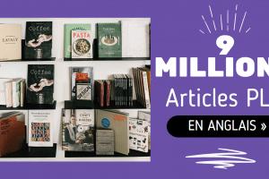 9 MILLIONS d'ARTICLES PLR Sur 1000 NICHES