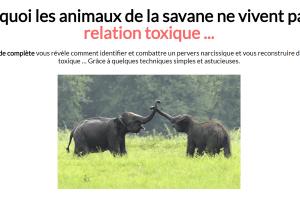 PN-Libération : Pervers Narcissiques et Relations toxiques