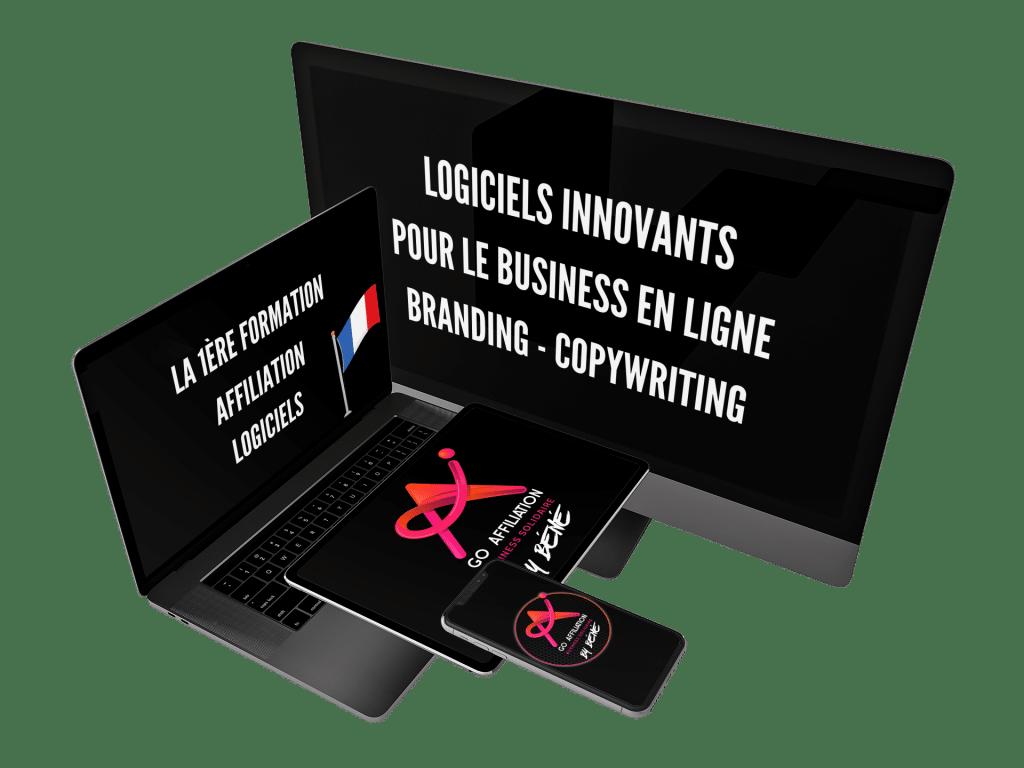 GO Affiliation - business solidaire pour entrepreneurs motivés